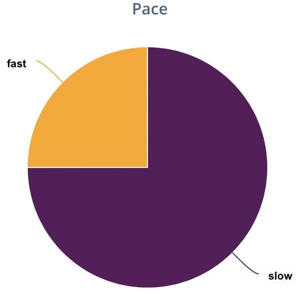 Pie graph. Pace (1 fast and 3 slow)